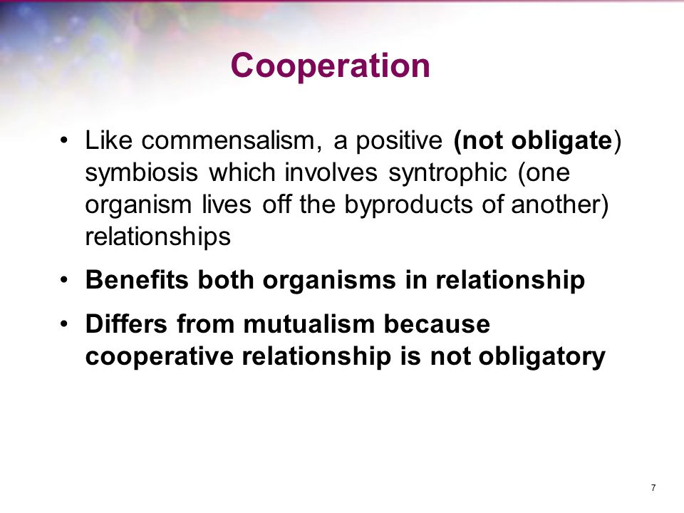 Cooperation Like commensalism, a positive (not obligate) symbiosis which involves syntrophic (one organism lives off the byproducts of another) relationships Benefits both organisms in relationship Differs from mutualism because cooperative relationship is not obligatory 7