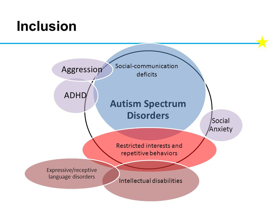 Inclusion Autism Spectrum Disorders Social Anxiety Restricted interests and repetitive behaviors Intellectual disabilities ADHD Aggression Expressive/receptive language disorders Social-communication deficits