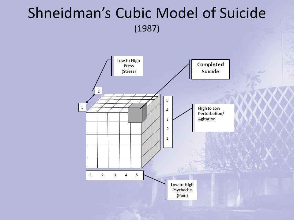 Shneidman's Cubic Model of Suicide (1987) 5432154321 1 2 3 4 5 1 5 Completed Suicide High to Low Perturbation/ Agitation Low to High Psychache (Pain) Low to High Press (Stress)