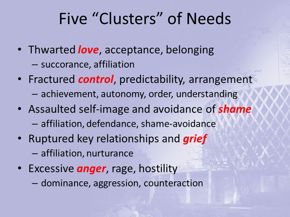 Five Clusters of Needs Thwarted love, acceptance, belonging – succorance, affiliation Fractured control, predictability, arrangement – achievement, autonomy, order, understanding Assaulted self-image and avoidance of shame – affiliation, defendance, shame-avoidance Ruptured key relationships and grief – affiliation, nurturance Excessive anger, rage, hostility – dominance, aggression, counteraction