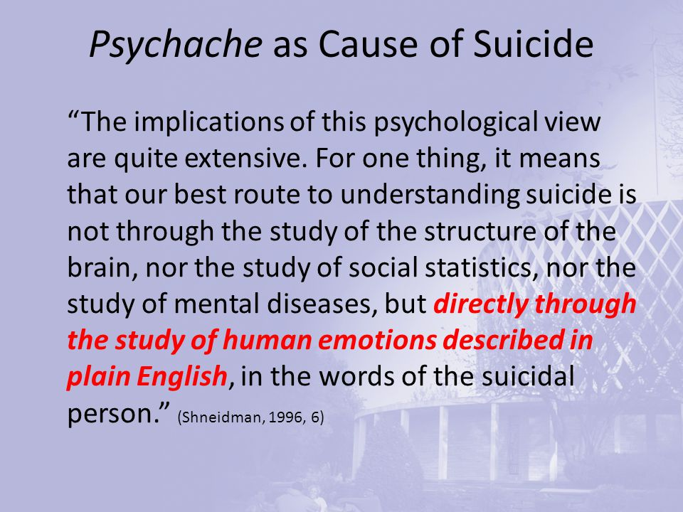 Psychache as Cause of Suicide The implications of this psychological view are quite extensive.