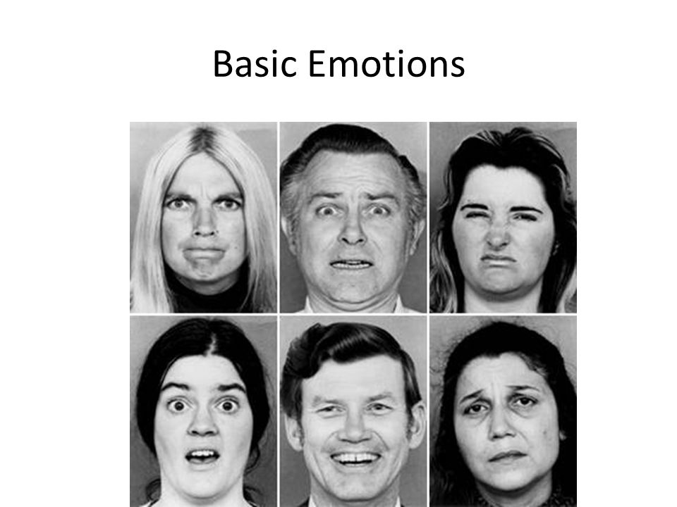 Basic Emotions