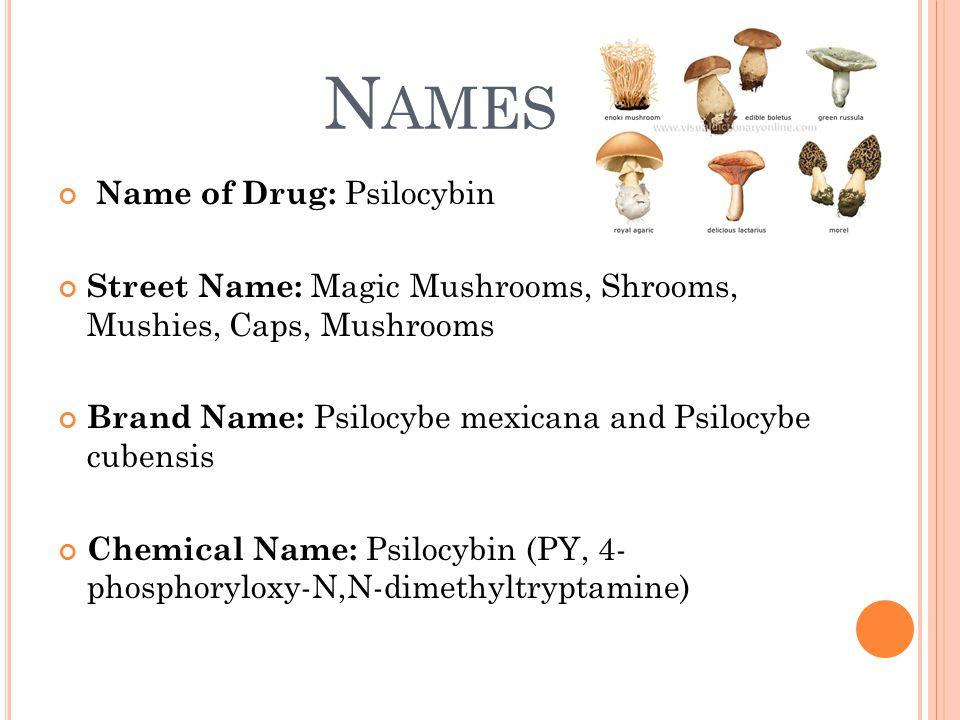 N AMES Name of Drug: Psilocybin Street Name: Magic Mushrooms, Shrooms, Mushies, Caps, Mushrooms Brand Name: Psilocybe mexicana and Psilocybe cubensis