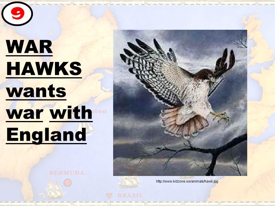 WAR HAWKS wants war with England 9 http://www.kidzone.ws/animals/hawk.jpg