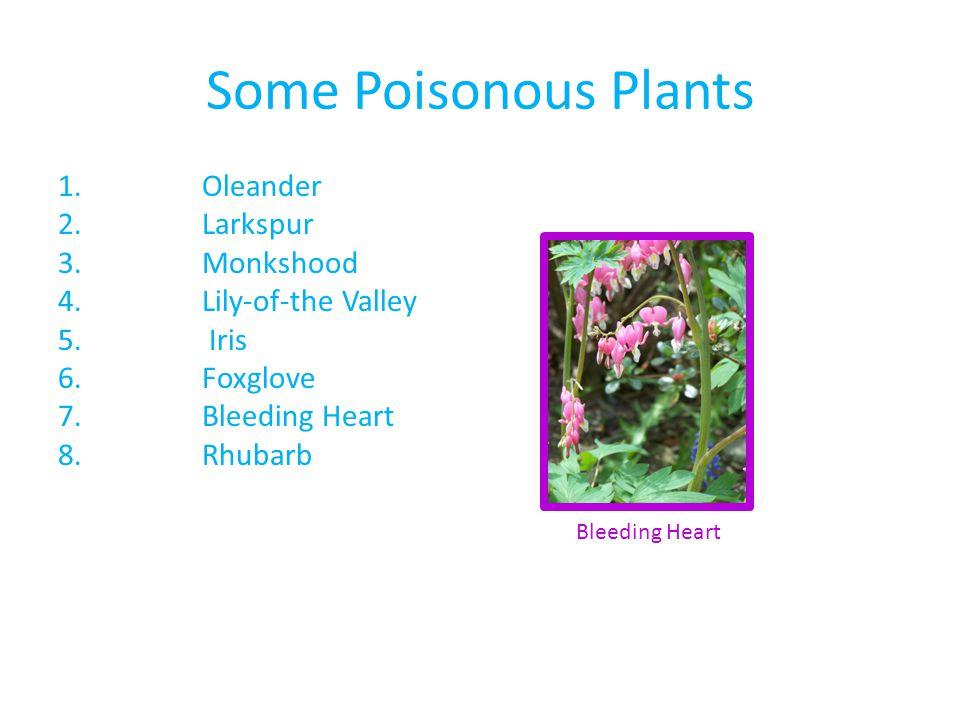 Some Poisonous Plants 1.Oleander 2.Larkspur 3.Monkshood 4.Lily-of-the Valley 5. Iris 6.Foxglove 7.Bleeding Heart 8.Rhubarb Bleeding Heart