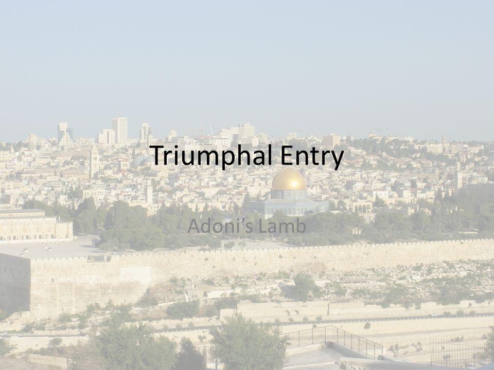Triumphal Entry Adoni's Lamb
