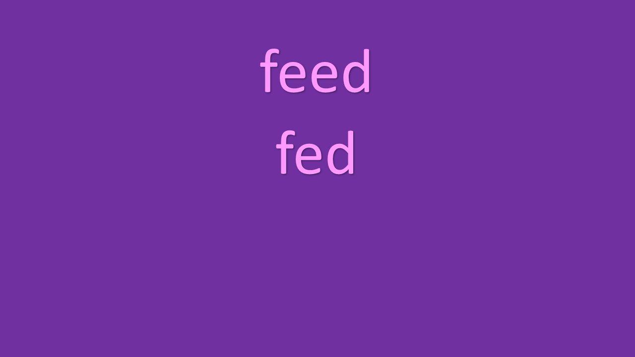 feed fed