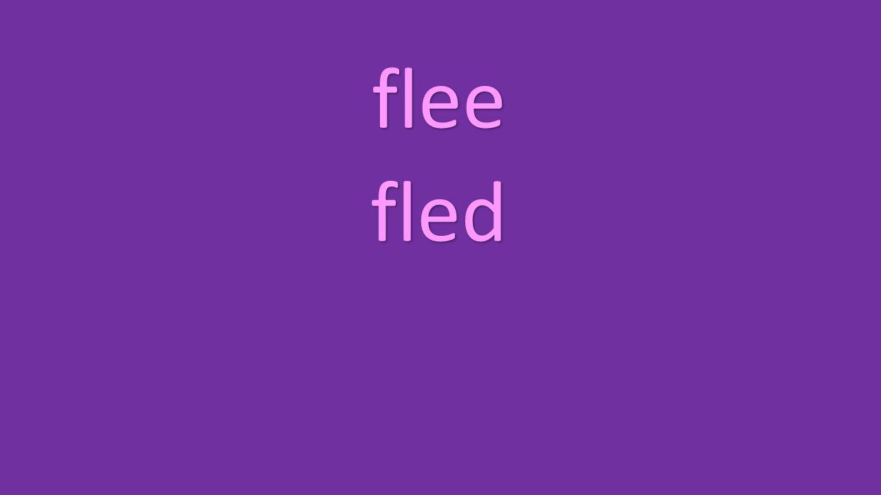 flee fled