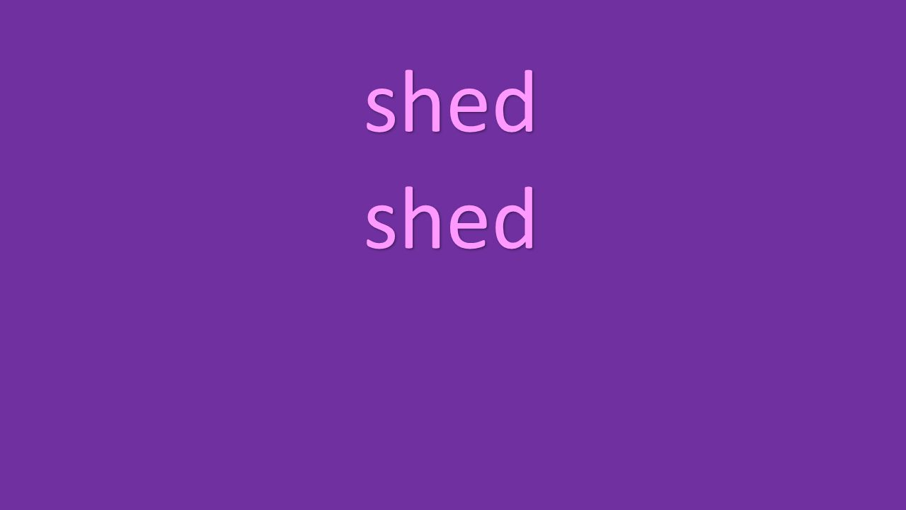 shed shed