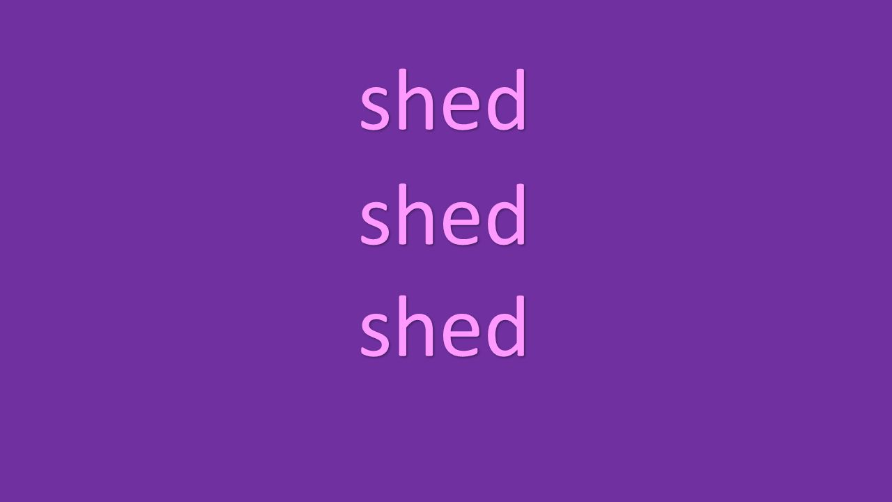 shed shed shed