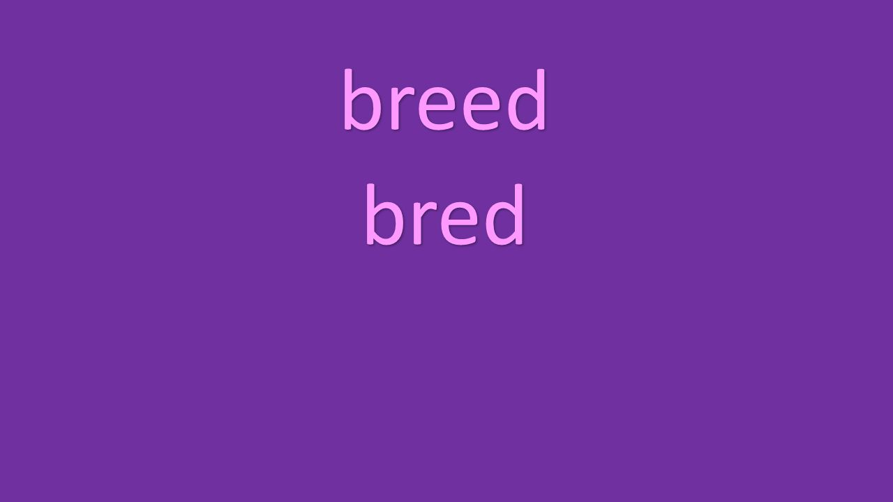 breed bred
