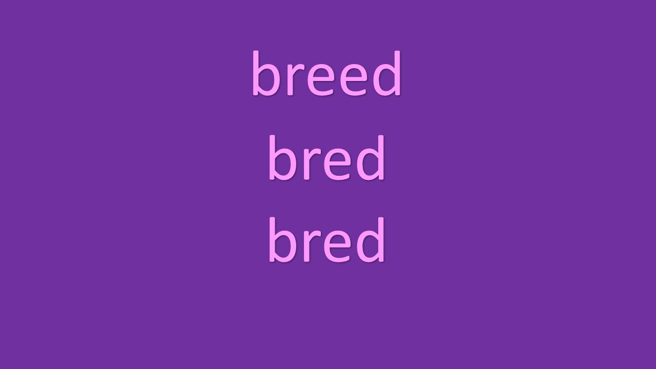 breed bred bred