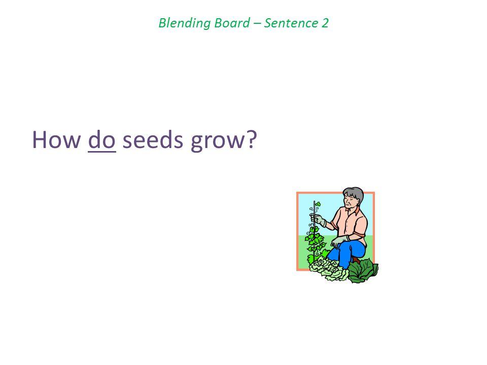 Blending Board – Sentence 2 How do seeds grow?
