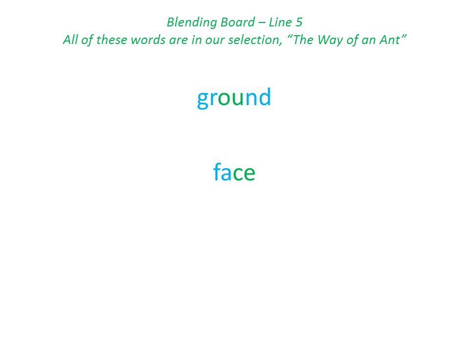 Blending Board – Line 5 All of these words are in our selection, The Way of an Ant ground face