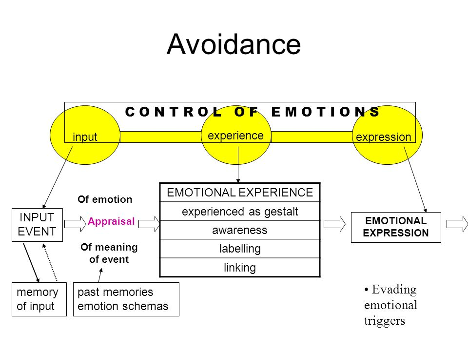 INPUT EVENT memory of input past memories emotion schemas EMOTIONAL EXPERIENCE experienced as gestalt awareness labelling linking EMOTIONAL EXPRESSION experience expressioninput C O N T R O L O F E M O T I O N S Avoidance Evading emotional triggers Of meaning of event Appraisal Of emotion
