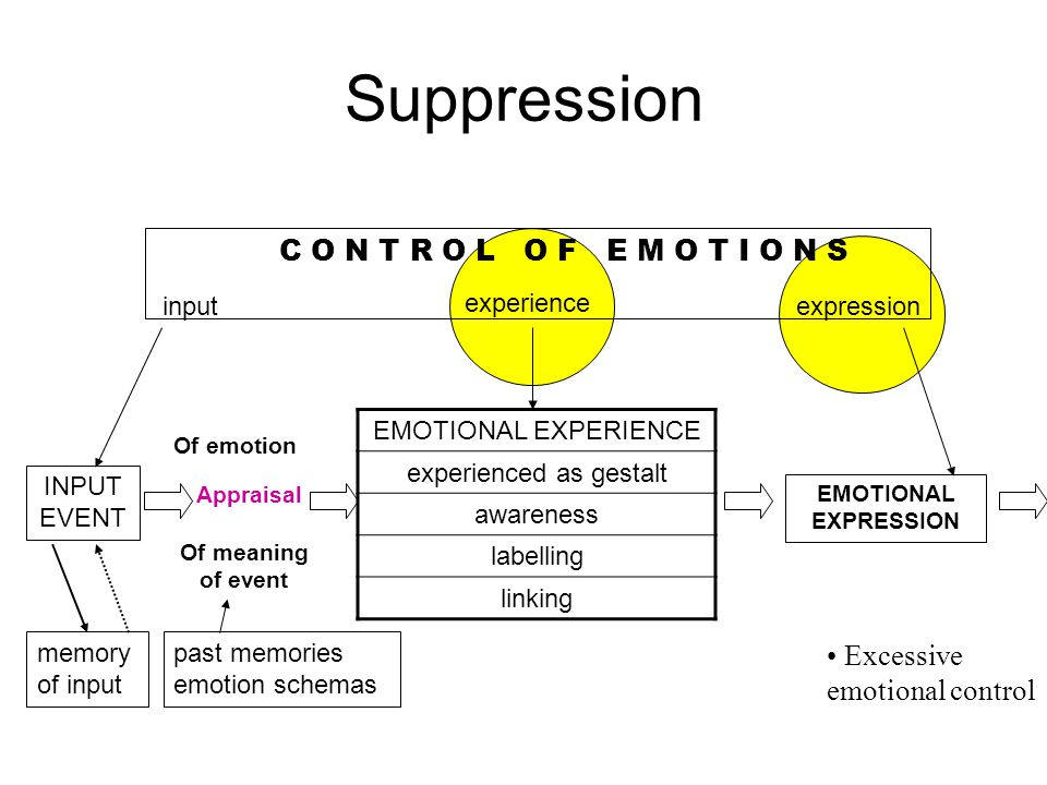 INPUT EVENT memory of input past memories emotion schemas EMOTIONAL EXPERIENCE experienced as gestalt awareness labelling linking EMOTIONAL EXPRESSION