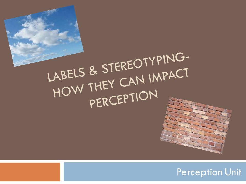 LABELS & STEREOTYPING- HOW THEY CAN IMPACT PERCEPTION Perception Unit