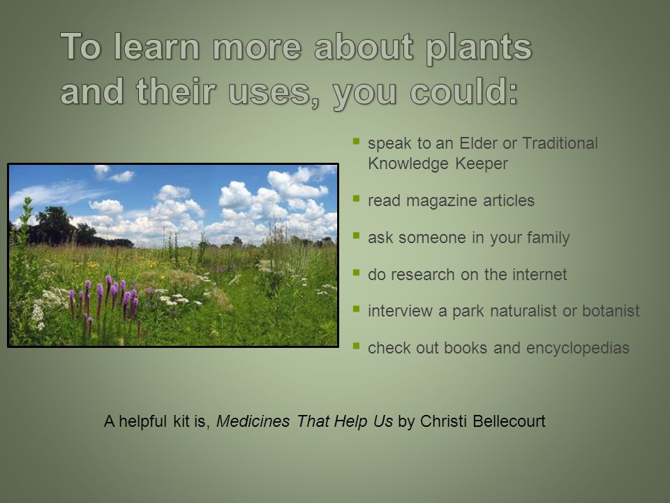  speak to an Elder or Traditional Knowledge Keeper  read magazine articles  ask someone in your family  do research on the internet  interview a park naturalist or botanist  check out books and encyclopedias A helpful kit is, Medicines That Help Us by Christi Bellecourt