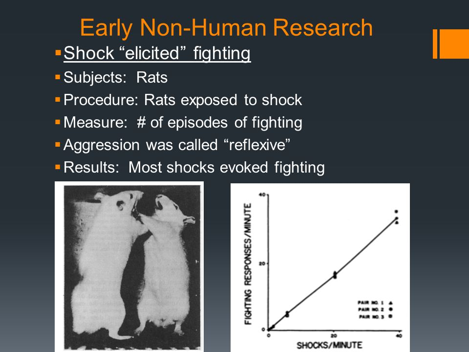 Early Non-Human Research  Shock elicited biting of inanimate objects  Subjects: Rats  Procedure: Rats exposed to shock  Measure: # of episodes of biting of metal, wood, or rubber targets