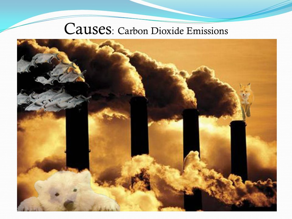 Carbon Dioxide Emissions My first image depicts a primary cause of global warming; mass carbon dioxide emissions.