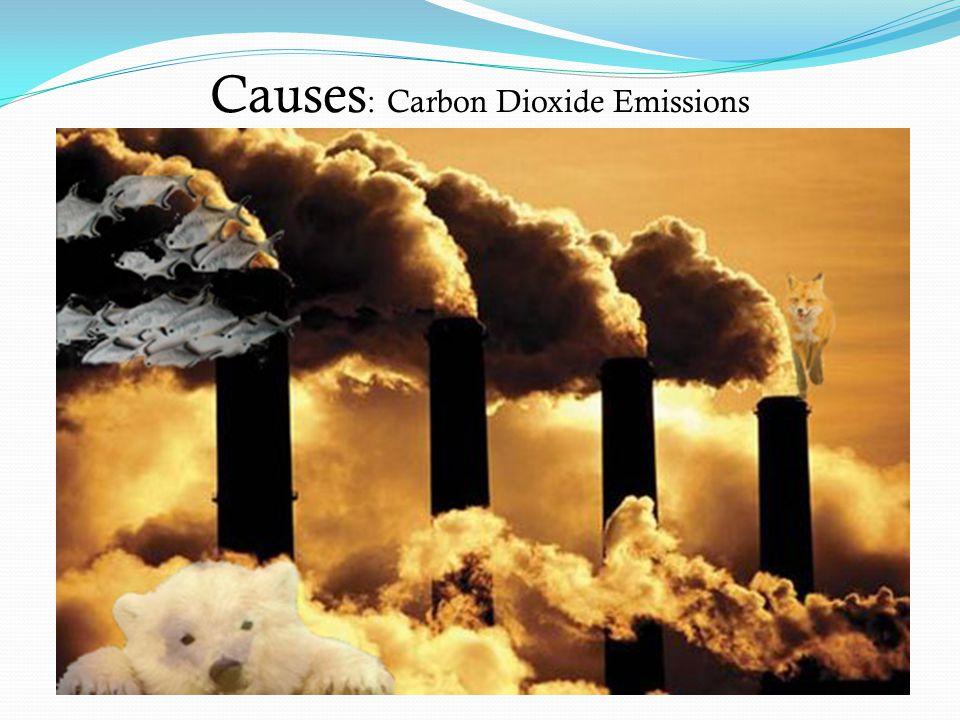 Causes : Carbon Dioxide Emissions
