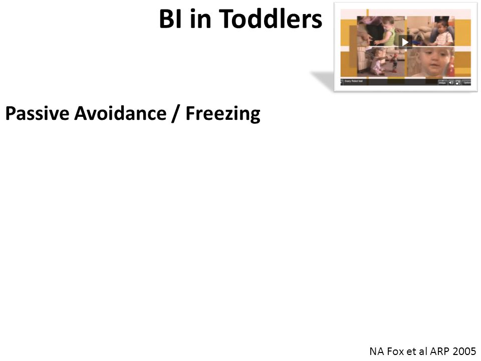 BI in Toddlers Passive Avoidance / Freezing Avoid unfamiliar events, objects ('robot') and people ('intruder') When faced with such challenges, children with high levels of BI cease their play, become quiet, and withdraw to the proximity of their caregivers NA Fox et al ARP 2005