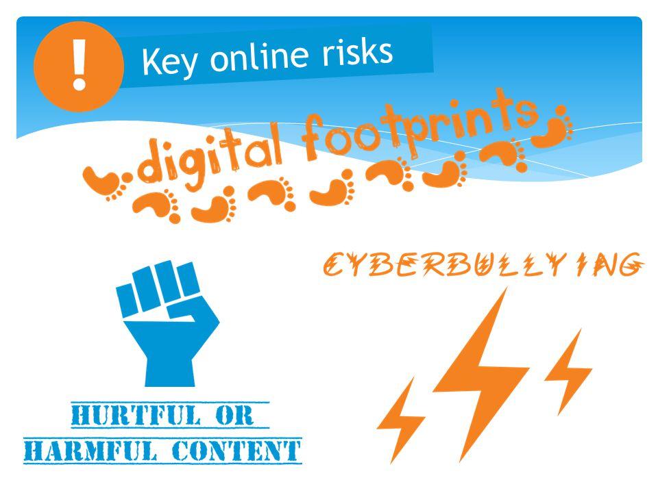 Key online risks