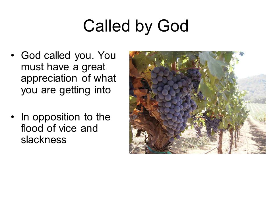 Called by God God called you.