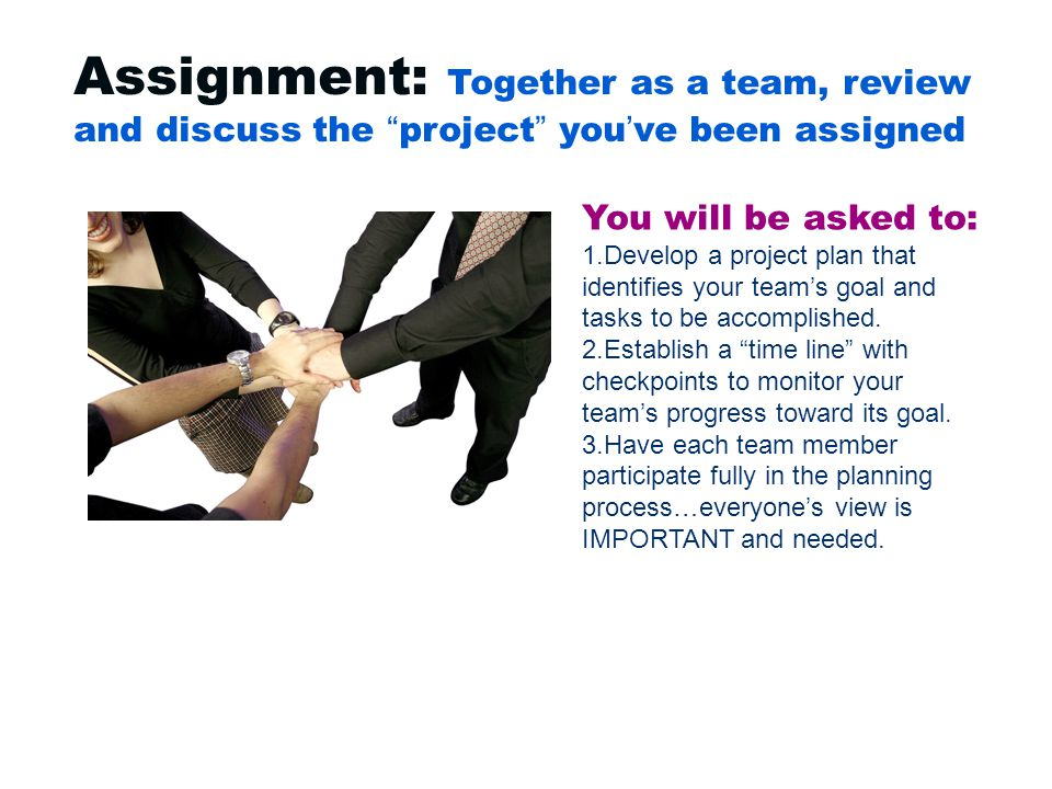 Assignment: Together as a team, review and discuss the project you've been assigned You will be asked to: 1.Develop a project plan that identifies your team's goal and tasks to be accomplished.