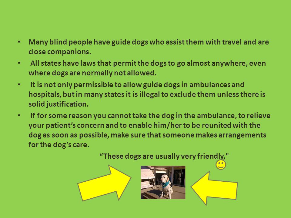 Examination for a blind examining a blind or visually impaired person, be aware that some, despite their loss of vision, may be very sensitive to bright light on their eyes.