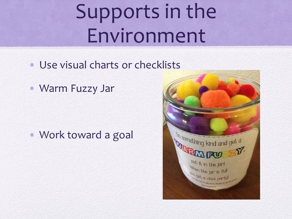 Supports in the Environment Use visual charts or checklists Warm Fuzzy Jar Work toward a goal
