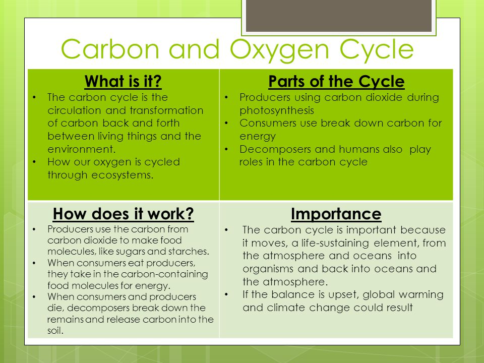 Carbon and Oxygen Cycle What is it? The carbon cycle is the circulation and transformation of carbon back and forth between living things and the envi