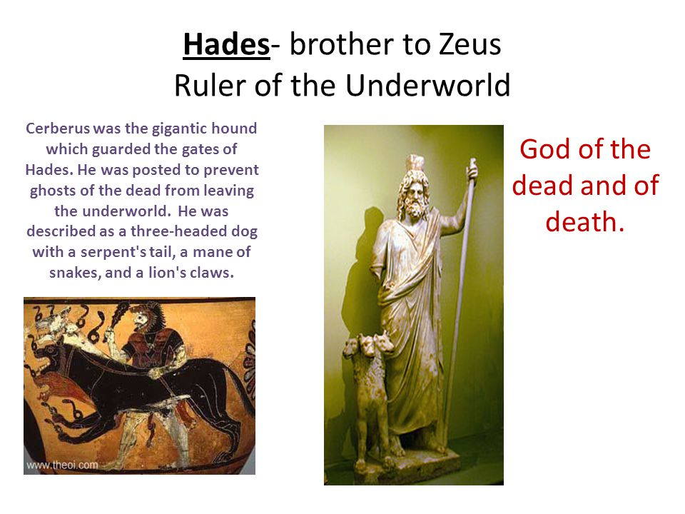 Hades- brother to Zeus Ruler of the Underworld God of the dead and of death. Cerberus was the gigantic hound which guarded the gates of Hades. He was