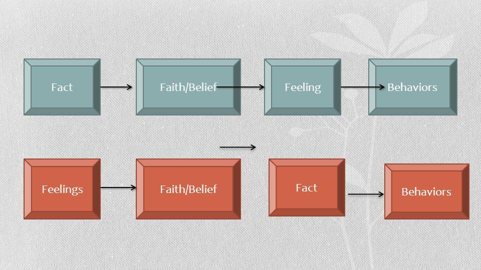 FactFaith/BeliefFeelingBehaviors FeelingsFaith/Belief Fact Behaviors