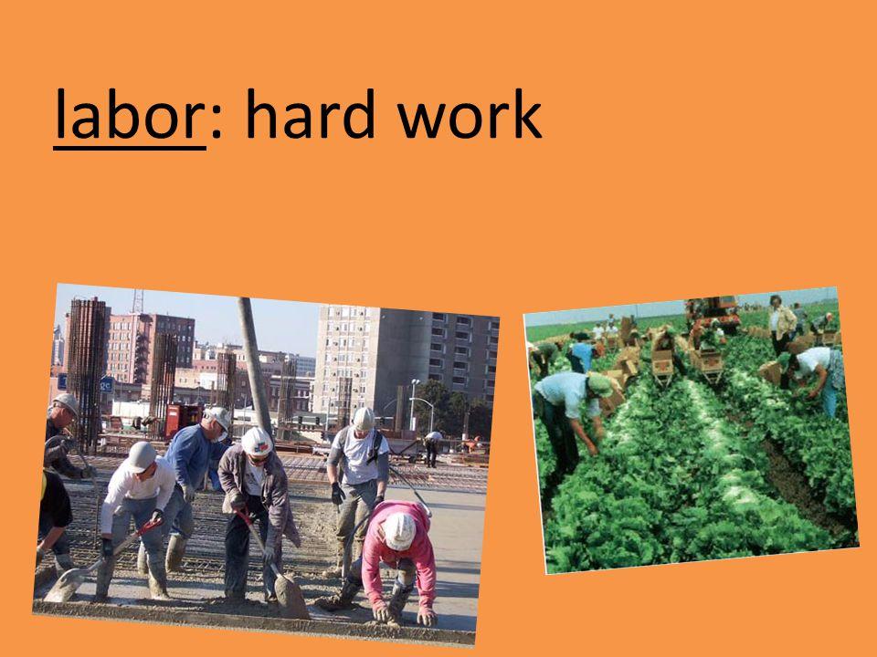 labor: hard work