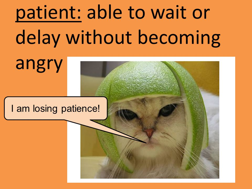patient: able to wait or delay without becoming angry I am losing patience!