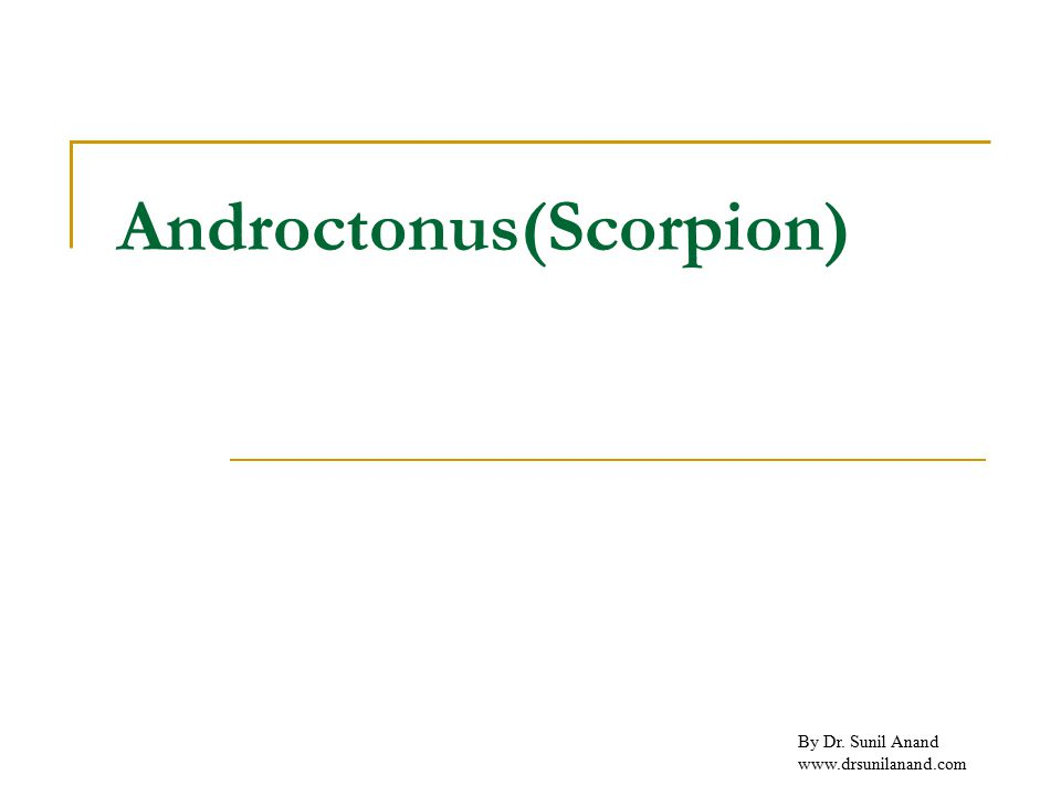 By Dr. Sunil Anand www.drsunilanand.com Androctonus(Scorpion)