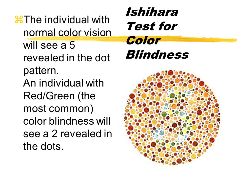 zThe individual with normal color vision will see a 5 revealed in the dot pattern.
