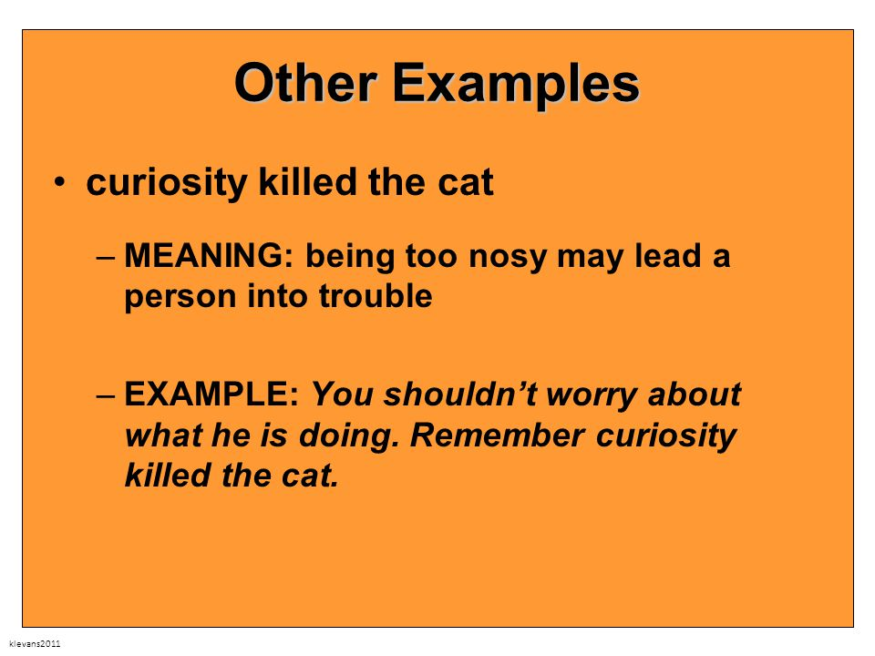 klevans2011 Other Examples curiosity killed the cat –MEANING: being too nosy may lead a person into trouble –EXAMPLE: You shouldn't worry about what he is doing.