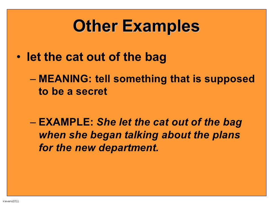 klevans2011 Other Examples let the cat out of the bag –MEANING: tell something that is supposed to be a secret –EXAMPLE: She let the cat out of the bag when she began talking about the plans for the new department.