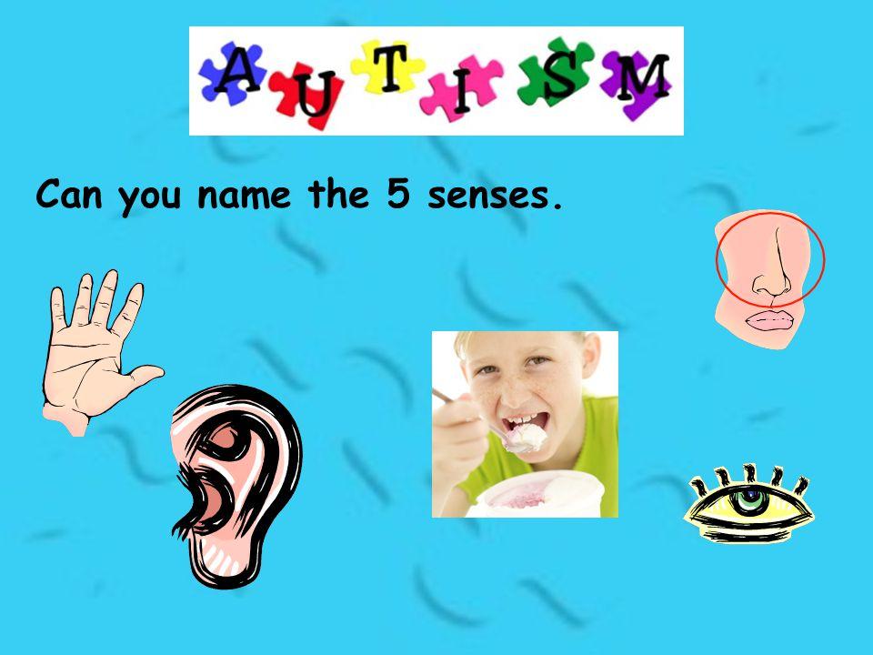 Can you name the 5 senses.