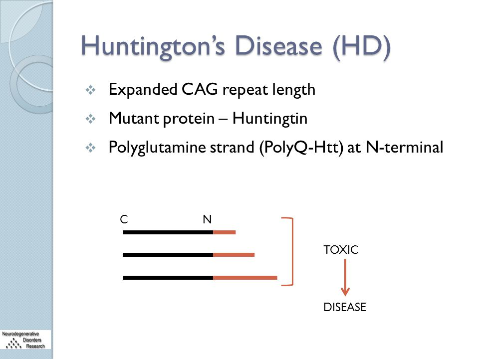 Huntington's Disease (HD)  Expanded CAG repeat length  Mutant protein – Huntingtin  Polyglutamine strand (PolyQ-Htt) at N-terminal CN TOXIC DISEASE