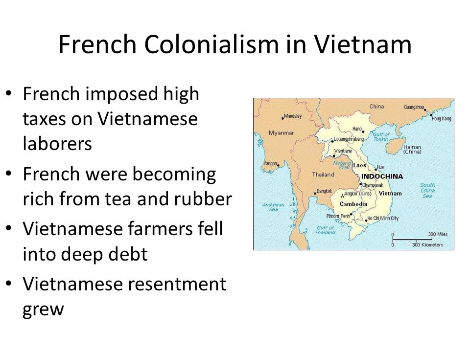 French Colonialism in Vietnam French imposed high taxes on Vietnamese laborers French were becoming rich from tea and rubber Vietnamese farmers fell into deep debt Vietnamese resentment grew