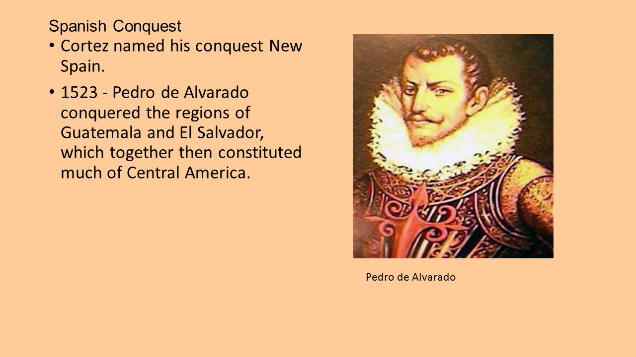 The Rise of New Spain The Spanish crown rapidly sought to consolidate its new empire and slowly curbed Cortes's personal power.