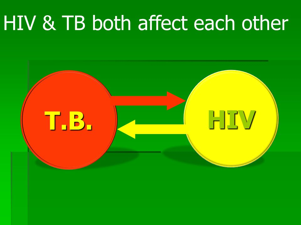 Tuberculosis acts to accelerate the clinical course of HIV infection  5- to 160-fold increase in viral replication during the acute phase of untreated tuberculosis leads to increased HIV viral load