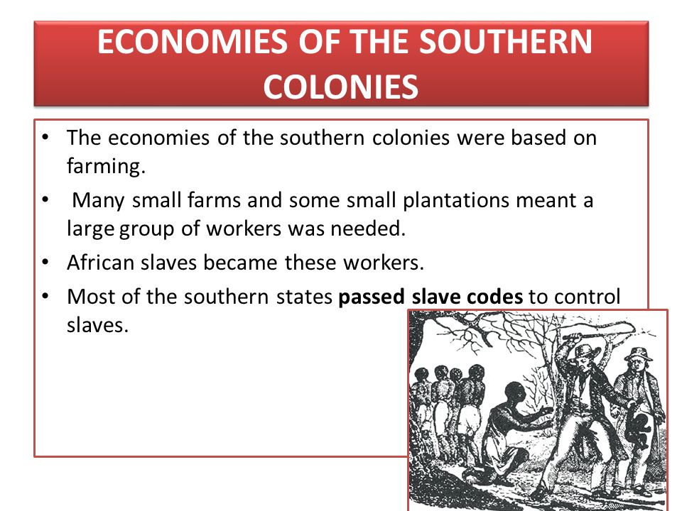 ECONOMIES OF THE SOUTHERN COLONIES The economies of the southern colonies were based on farming. Many small farms and some small plantations meant a l