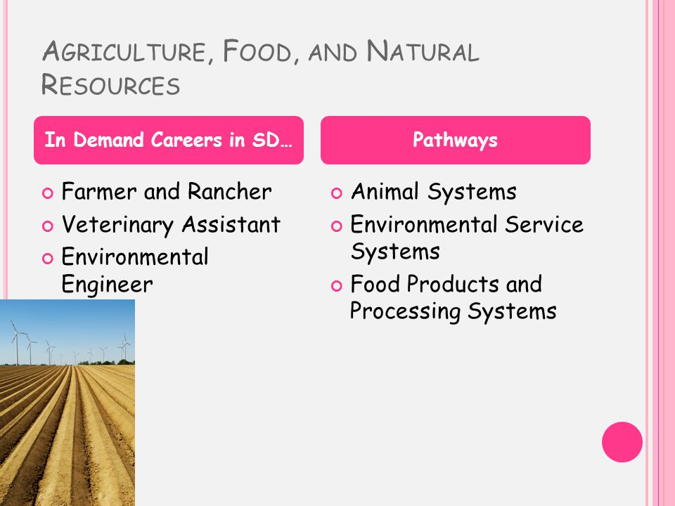 A GRICULTURE, F OOD, AND N ATURAL R ESOURCES Farmer and Rancher Veterinary Assistant Environmental Engineer Animal Systems Environmental Service Systems Food Products and Processing Systems In Demand Careers in SD…Pathways