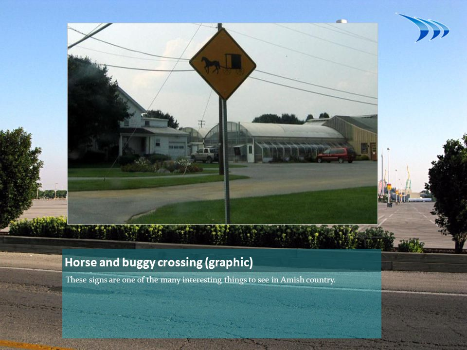 Horse and buggy crossing (graphic) These signs are one of the many interesting things to see in Amish country.