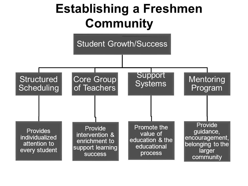 Establishing a Freshmen Community Student Growth/Success Mentoring Program Provide guidance, encouragement, belonging to the larger community Support Systems Promote the value of education & the educational process Core Group of Teachers Provide intervention & enrichment to support learning success Structured Scheduling Provides individualized attention to every student