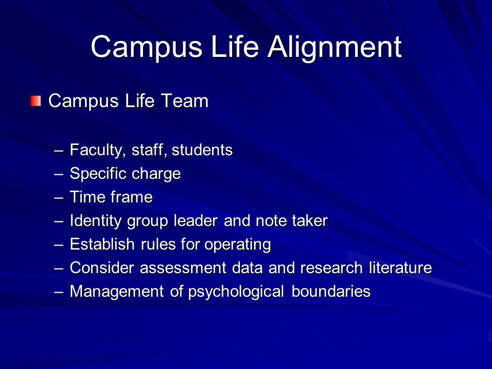 Campus Life Alignment Campus Life Team –Faculty, staff, students –Specific charge –Time frame –Identity group leader and note taker –Establish rules f